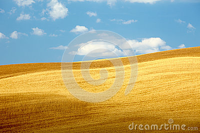 Countryside landscape in Tuscany region