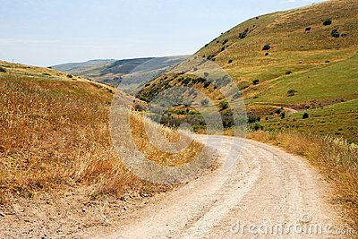 Countryside road bends among yellow hills