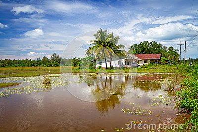 Countryside scenery in Thailand