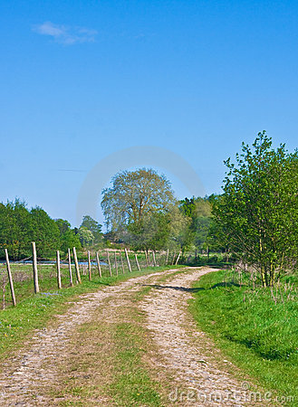 Free Countryside Track Royalty Free Stock Photos - 20088808