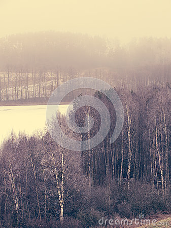 Free Countryside View Frosty Hilly Fields With Trees Stock Photo - 50312880