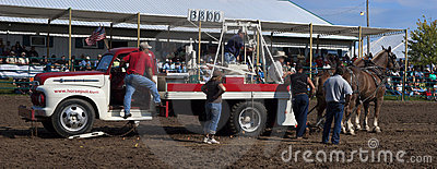 County Fair Farmer Horse Pull Competition Editorial Photo