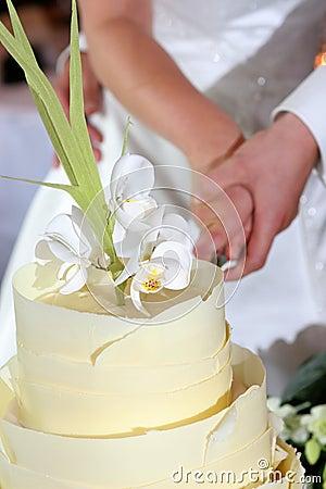 Free Couple Cutting Wedding Cake Royalty Free Stock Photo - 704235