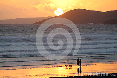 Couple and dogs with beach sunset
