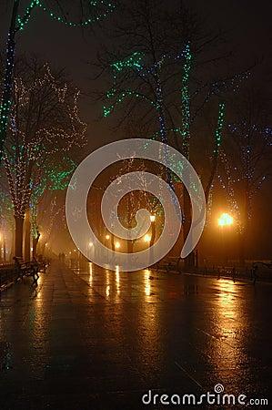 Couple at foggy night,Odessa ,ukraine