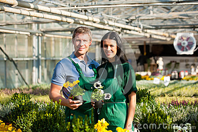 Couple of gardener in market garden or nursery