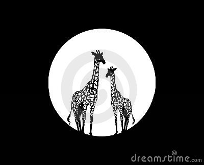 Couple of giraffes under the moon