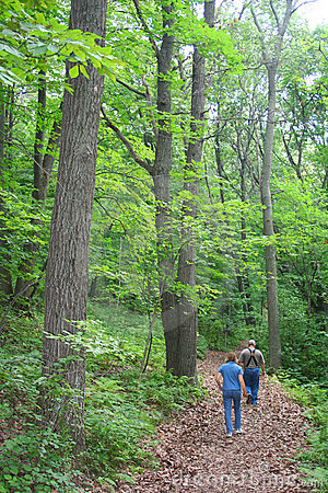 Couple hiking in forest