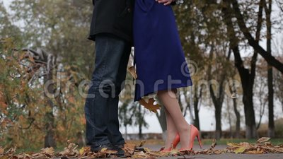 Couple in love embracing in autumnal park stock video footage
