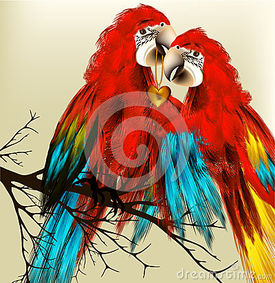 Cute couple of colorful vector realistic ara parrots sit on bran