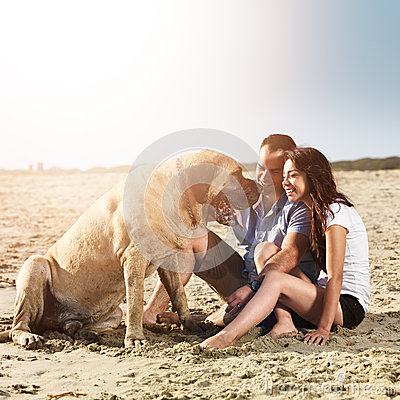 Couple playing with dog on the beach.