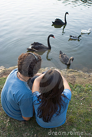 Couple By a Pond Watching Swans - Vertical