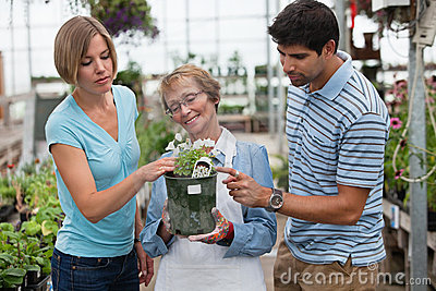 Couple shopping for plants