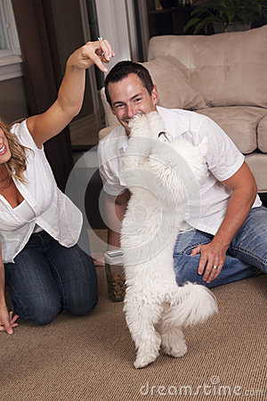 Couple teaching dog tricks