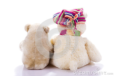 Couple of toy teddy bears from back