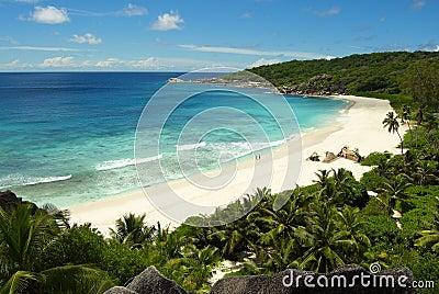 Couple on a tropical paradice beach