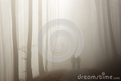 Couple walking in the misty forest