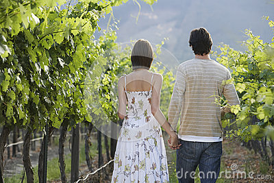 Couple Walking In Vineyard
