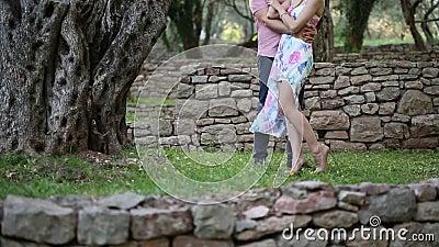 Couples dans un verger olive L'étreinte de nouveaux mariés dans la forêt W banque de vidéos