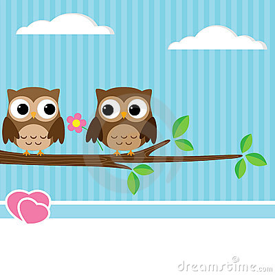 Couples de hibou