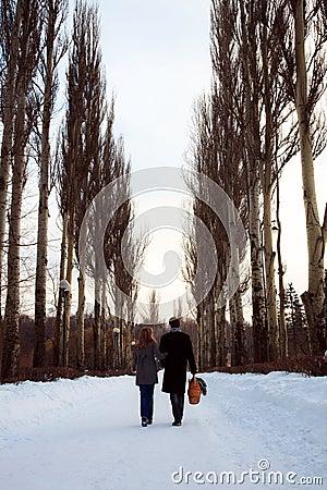 Couples marchant par la ruelle de peuplier