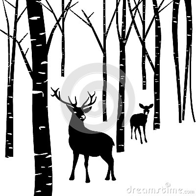 Free Couples Of Deer And Forest Stock Photos - 35868253