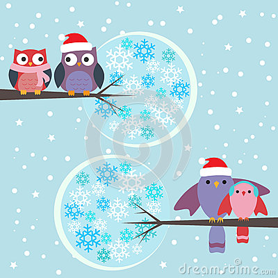 Couples of owls and birds winter