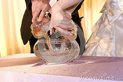 Couples put goldfish into fish crock