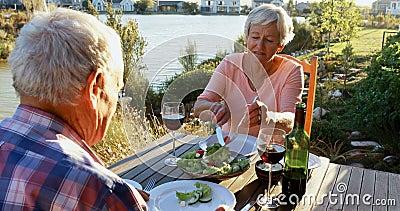 Couples supérieurs ayant le repas avec le vin rouge 4k banque de vidéos