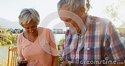 Couples supérieurs ayant le vin rouge dans l'arrière-cour 4k banque de vidéos