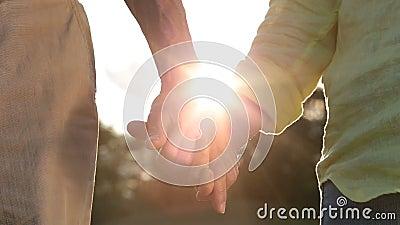 Couples supérieurs romantiques tenant des mains au coucher du soleil clips vidéos