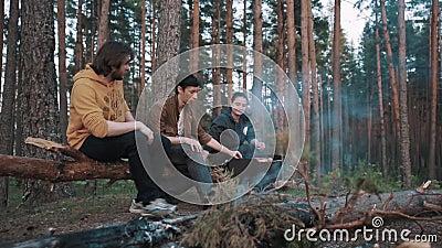 Couplez se reposer sur la forêt tombée d'identifiez-vous au barbecue, l'ami masculin entre banque de vidéos