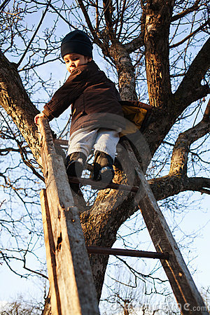 Courageous child on ladder