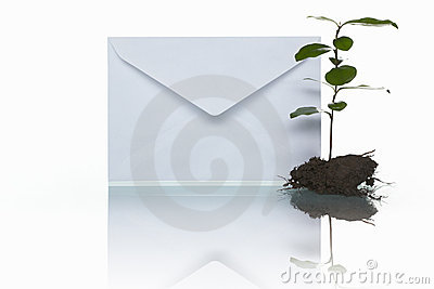 Courrier et plante verte