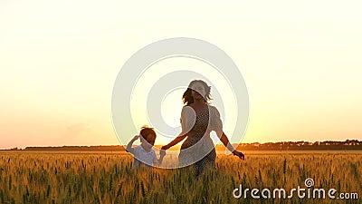 Course de mère et de fils sur le champ de blé d'or, tenant des mains Le concept de la maternité, une famille heureuse Agriculture banque de vidéos