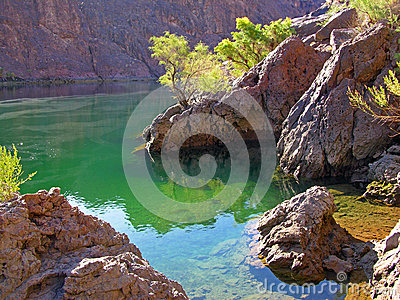 Cove on Colorado River below Boulder Dam, NV.