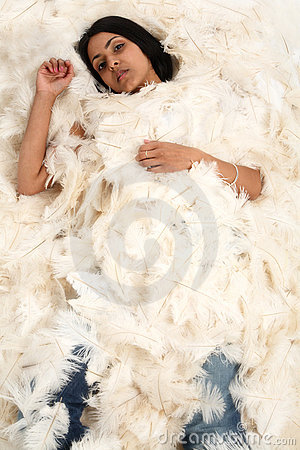 Covered in feathers