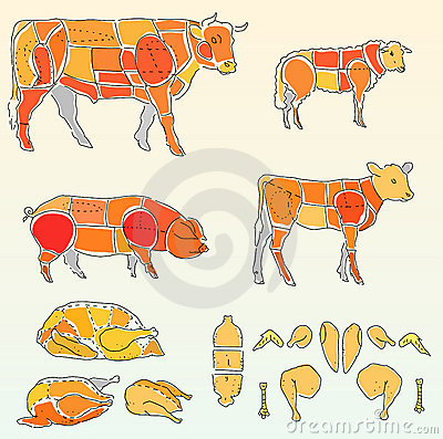 Free Cow And Chicken Royalty Free Stock Photos - 3792458
