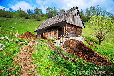 Cow barn in countryside