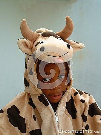Free Cow Boy Royalty Free Stock Photos - 78258