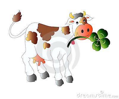 Cow with clover