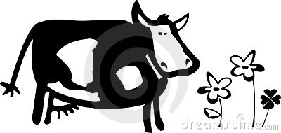 A cow illustration