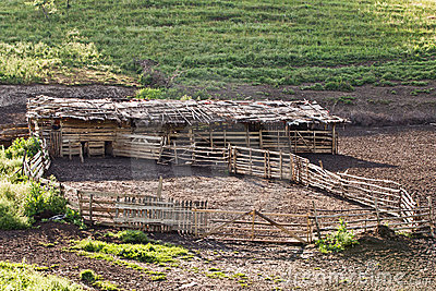 Cow shelter