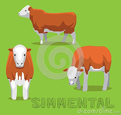 Free Cow Simmental Cartoon Vector Illustration Royalty Free Stock Images - 119335649