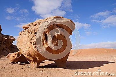 Cow stone in Wadi Rum desert, Jordan