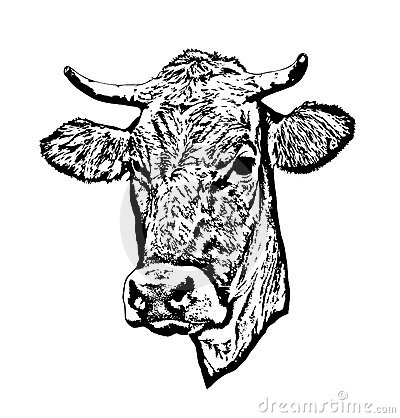 Free Cow Vector Royalty Free Stock Photos - 3142428