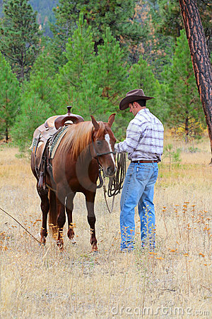 Free Cowboy Royalty Free Stock Photos - 21577478