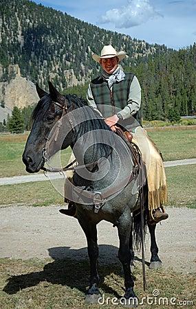Cowboy auf blauem Roan Pferd