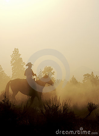 Free Cowboy In The Desert Royalty Free Stock Images - 2434349