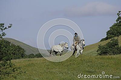 Cowboy Leading Horse